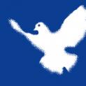 Anschreiben an Friedensgruppen